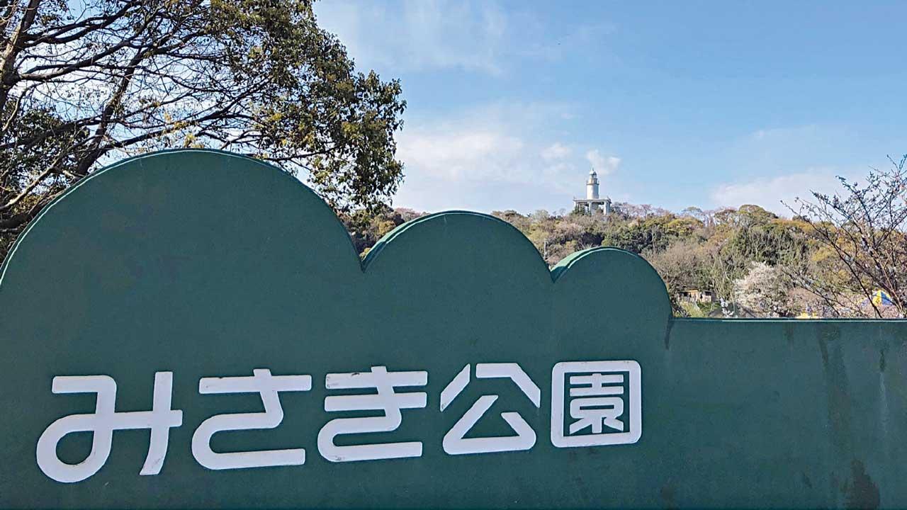 今後 みさき 公園